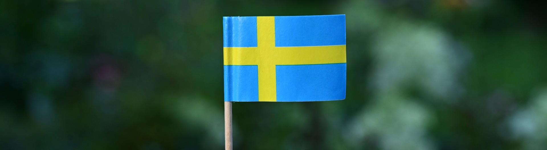 Schwedische Fahne aus Papier mit Zahnstocher