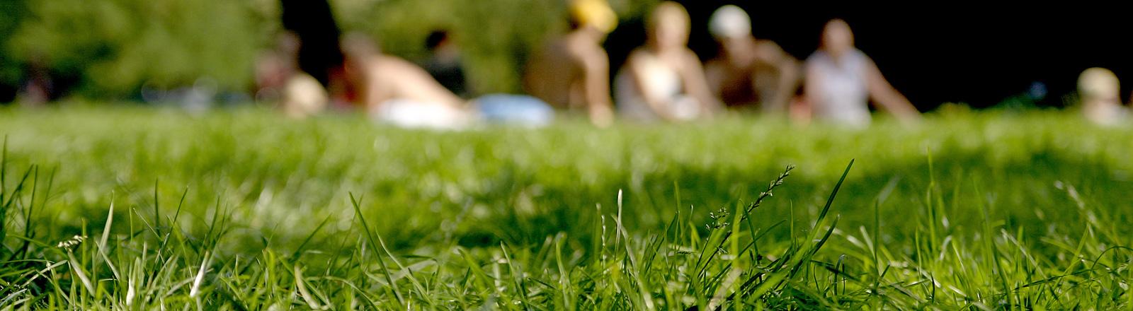 Auf einer Wiese sitzen Leute. Sie sind nur unscharf zu erkennen.