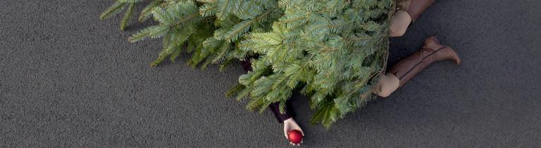 Frau liegt erschlagen unter einem Tannenbaum.