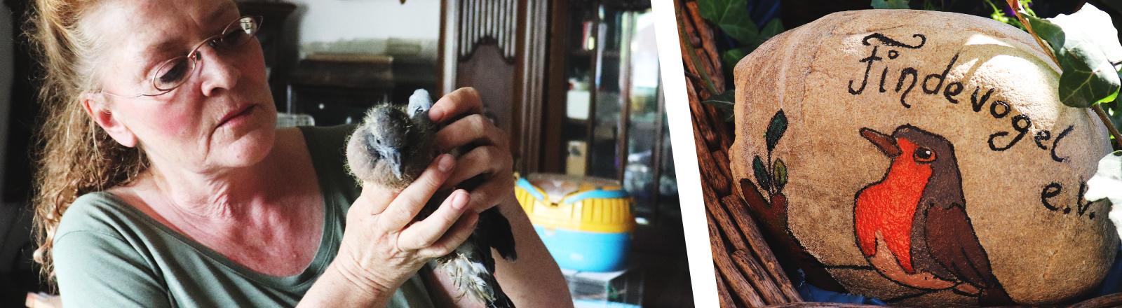 """Annedore Langner mit einer Ringeltaube. Das Bild eines Vogels auf einem Stein mit der Aufschrift """"Findevogel e.V."""""""