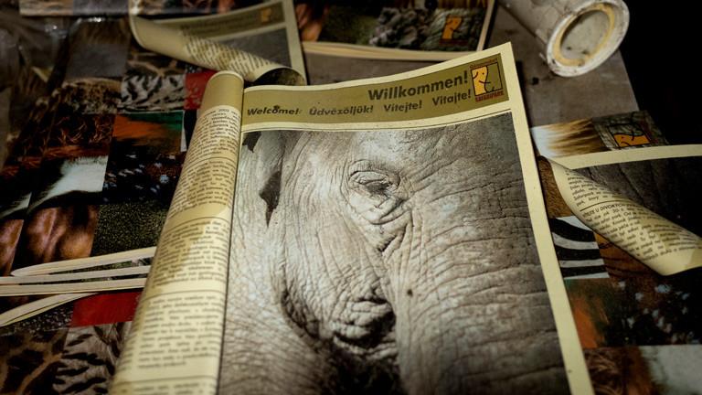 Eine alte Zeitung im Safaripark Gänserndorf.