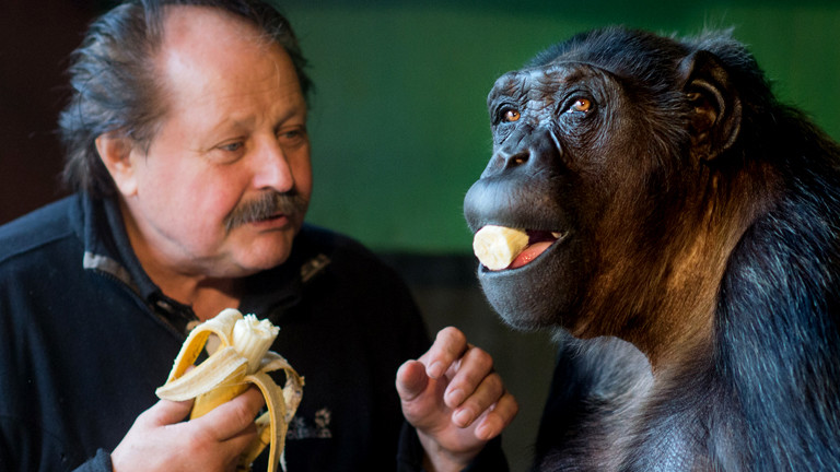 Klaus Köhler mit seinem Schimpansen Robby