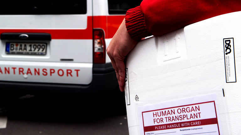 Jemand trägt eine Box mit einem menschlichen Organ.