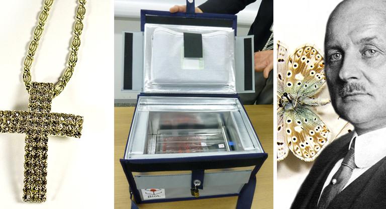 Silberkette, Stammzellenbox und Arnold Schultze