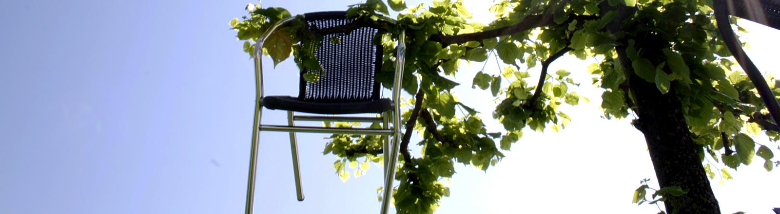 Gartenstuhl in einem Baum.