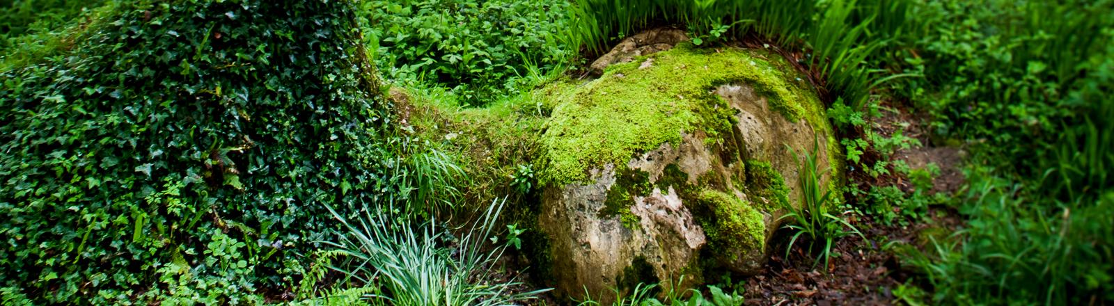 Eine Skulptur, die aussieht wie eine Frau aus Moos und Waldbewuchs