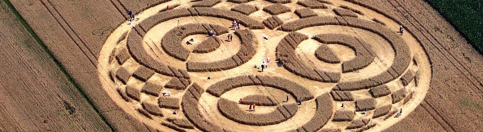 Kornkreise in einem Weizenfeld