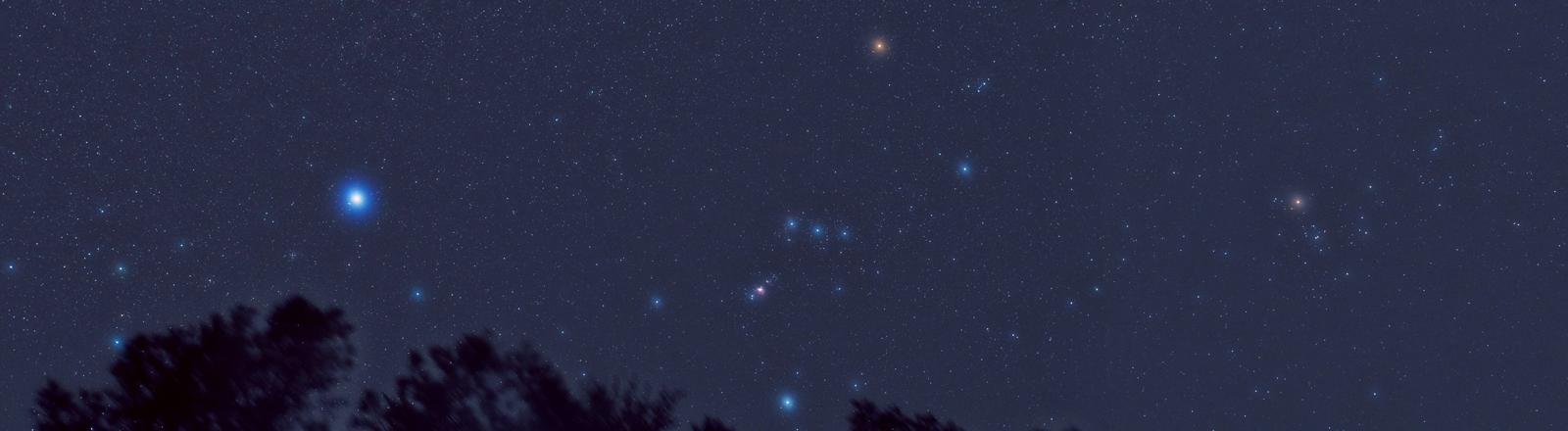 Das Sternbild Orion am Himmel - deutlich erkennbar darin wegen seiner gelblichen Färbung: der Stern Beteigeuze
