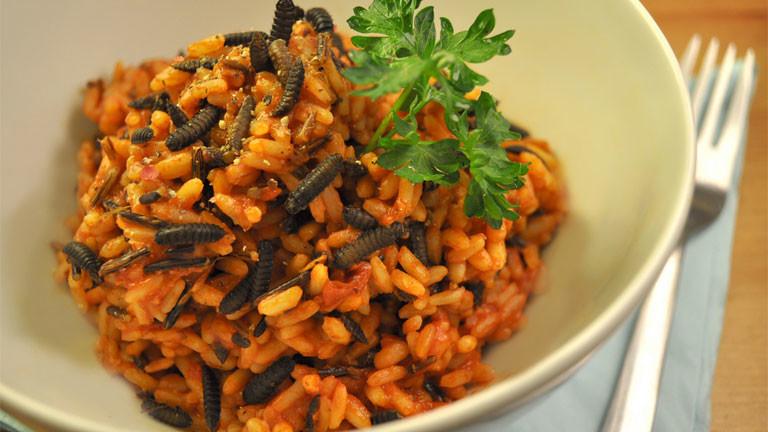 Eine Schale Reis mit Maden oder Raupen.