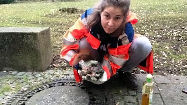 Biologin Franziska Baur rettet ein kleines Eichhörnchen.