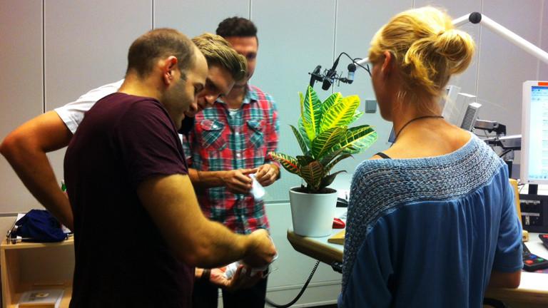 Jan Zieling und Philipp Ehlers von Evrgreen erklären Thilo und Nora, wie man Zimmerpflanzen richtig pflegt.