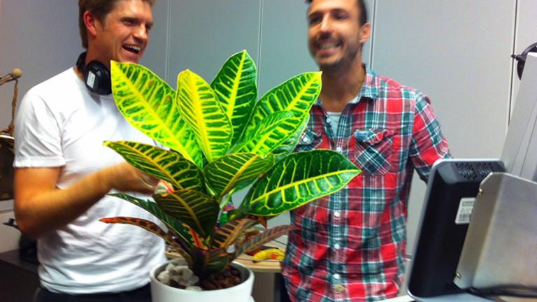 Im Vordergrund steht eine Topfpflanze, im Hintergrund lacht Moderator Thilo Jahn mit seinem Studiogast Philip Ehlers.