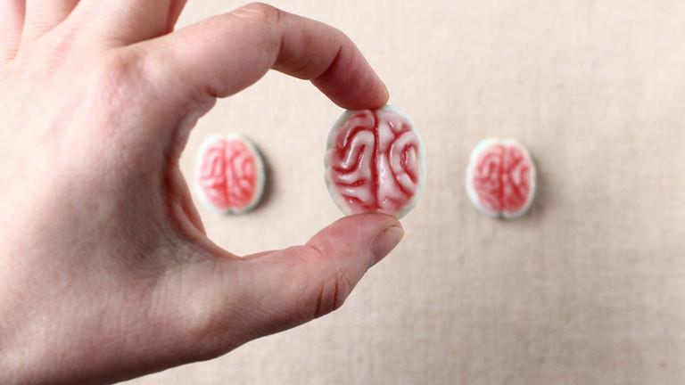 Eine Person hält ein Gehirn aus Fruchtgummi zwischen den Fingern.