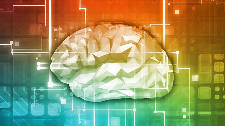 Grafische Darstellung eines Gehirns.