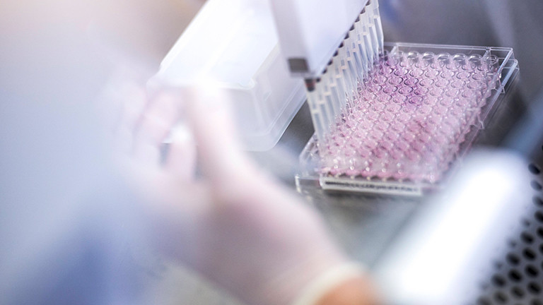 Virusproben werden im Labor analysiert.