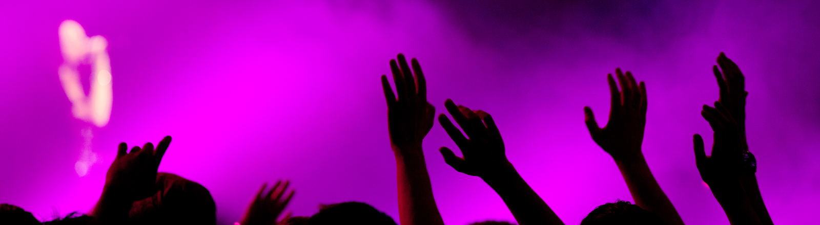 Fans auf einem Rockkonzert reißen die Arme in die Luft