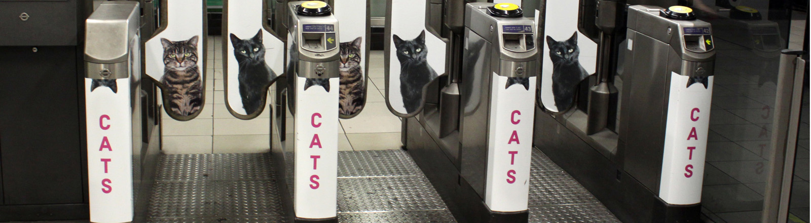 Eingangsschleusen zur U-Bahnstation bedruckt mit Katzen