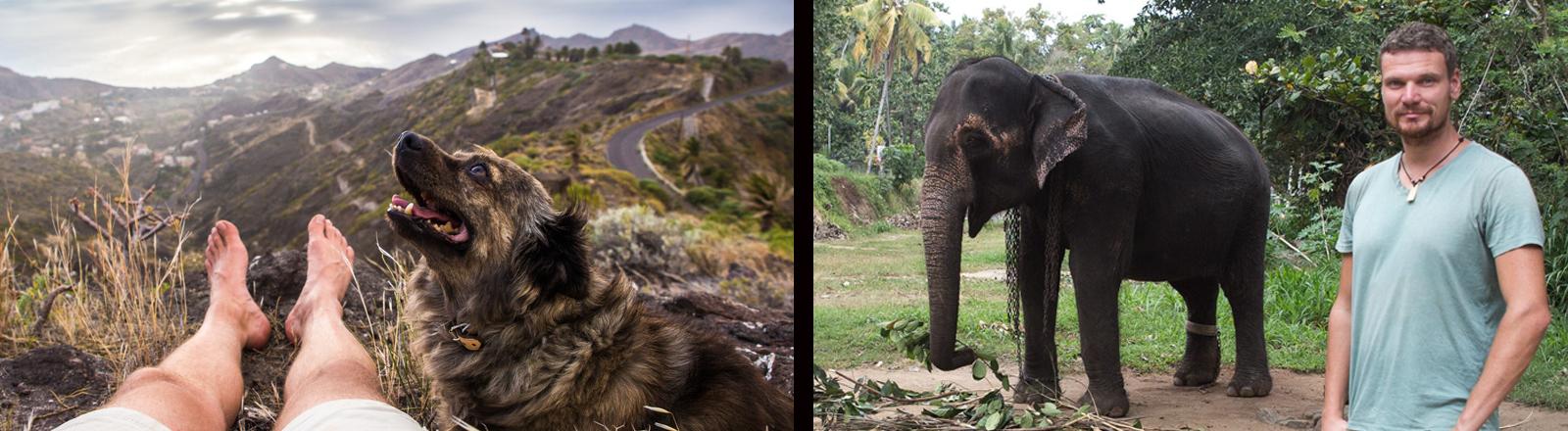 Markus Huth - Tiersitter - zusammen mit einem Hund in den Bergen von La Gomera und einem Elefanten in Sri Lanka.