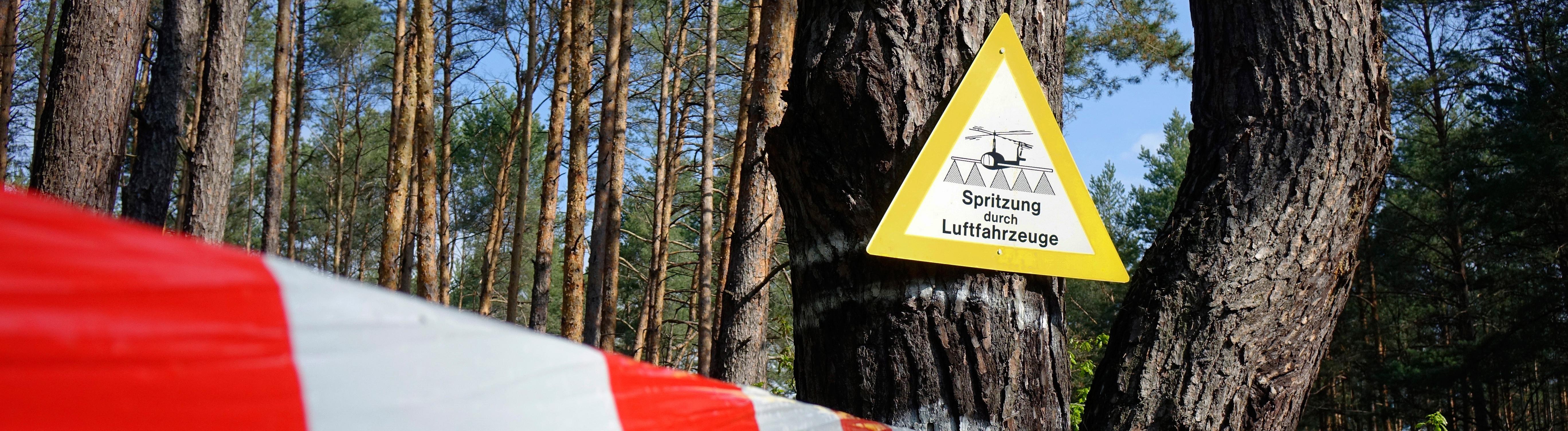 17.05.2019, Borkwalde, Brandenburg, An einer Kiefer befindet sich ein Warnschild.