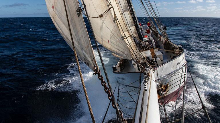 Mit dem Segelschiff Avontuur kommen die Kaffeebohnen nach Deutschland
