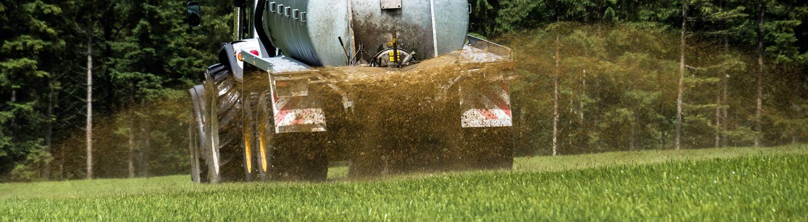 Bauer düngt ein Feld mit Gülle.