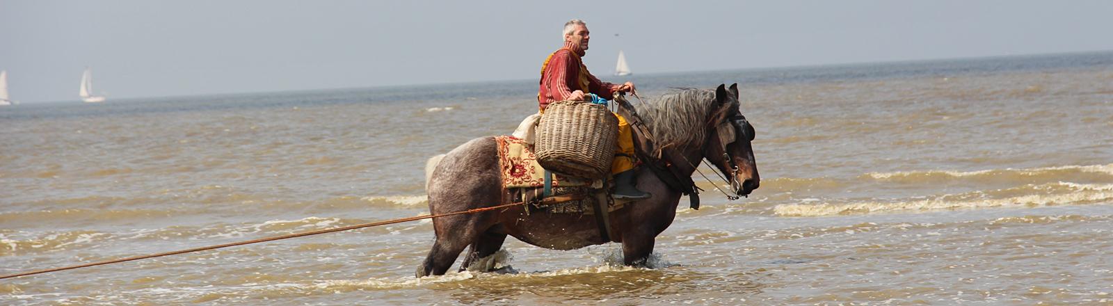 Ein Pferd steht bis zu den Knien im Meer, auf ihm sitzt ein Mann, der einen Korb hält.