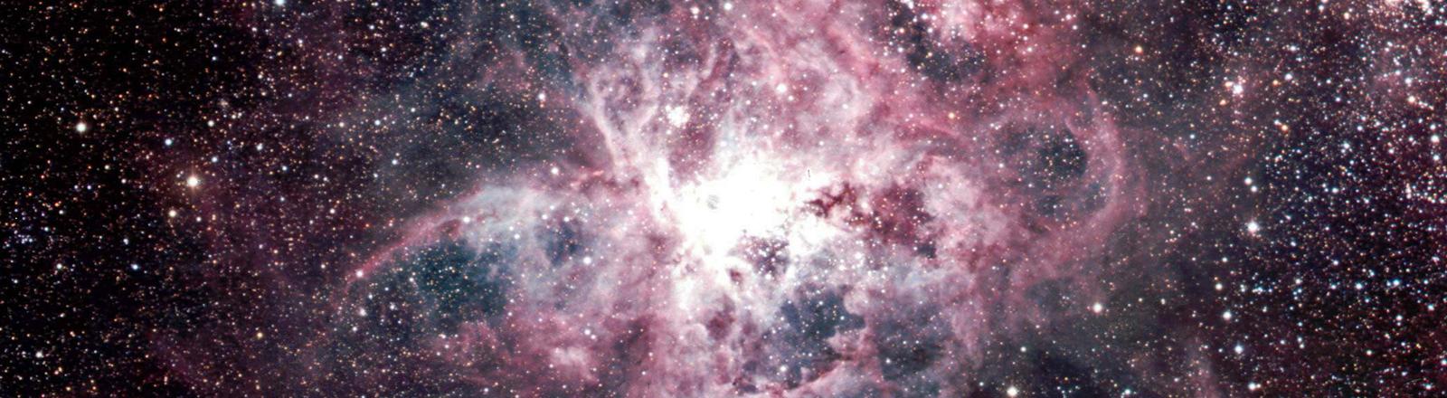 Sternhaufen in Weiß- und Rosatönen; Bild: dpa