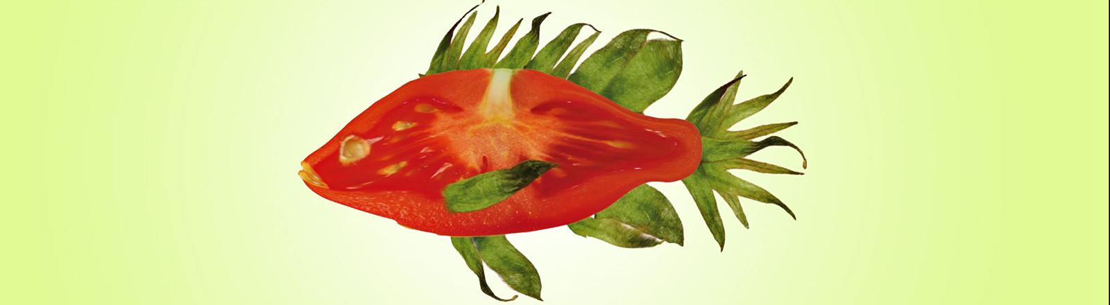 Eine Collage aus einer Tomatenscheibe in Fischform. Die Flossen sind aus Tomatenblättern geformt.