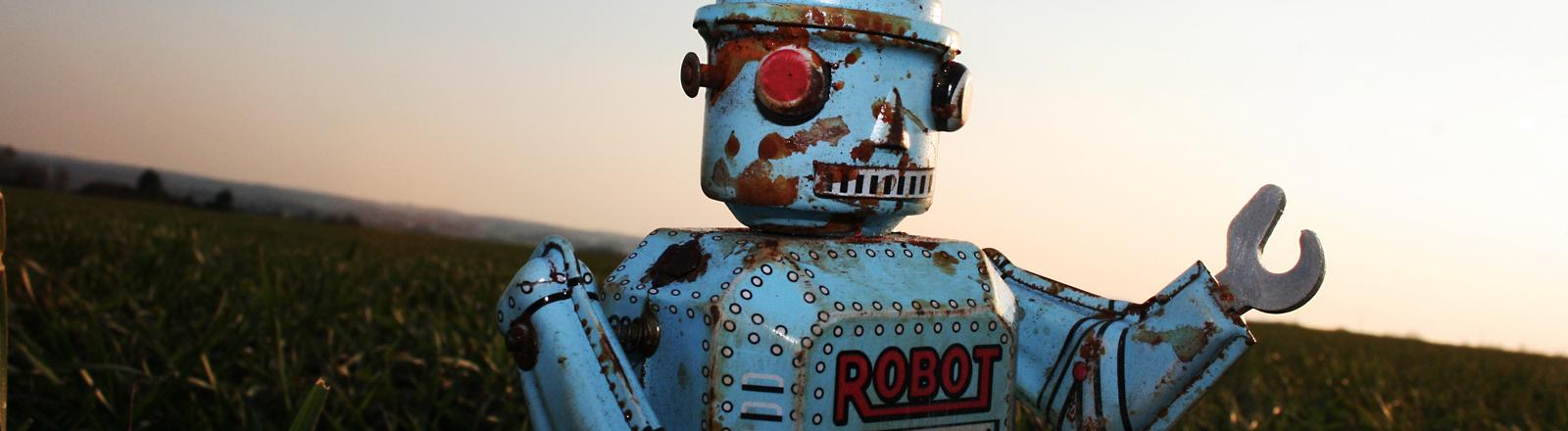 Ein alter, verrosteter Spielzeugroboter steht in einer Wiese.