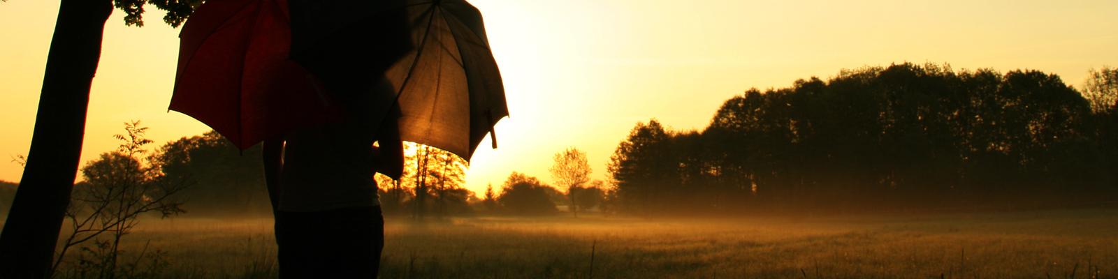 Ein Pärchen steht mit Regenschirmen im Sonnenaufgang auf einer Wiese.