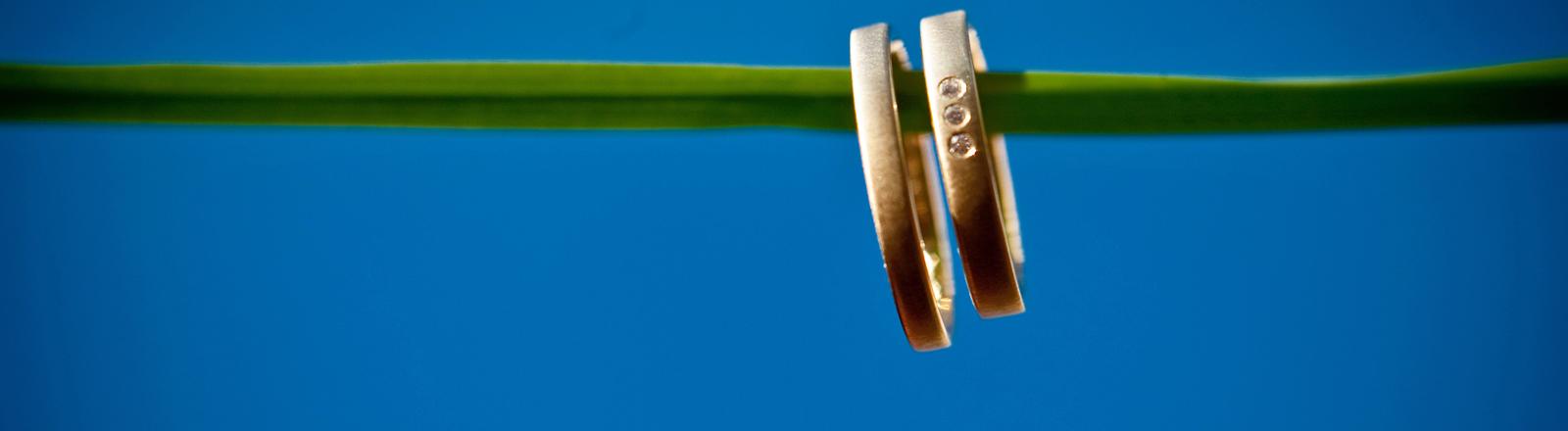 Zwei Eheringe sind auf einer grünen Schnur aufgereiht.