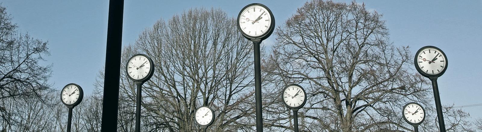 Fünf Uhren auf hohen Pfosten stehen nebeneinander, dahinter Bäume und blauer Himmel.