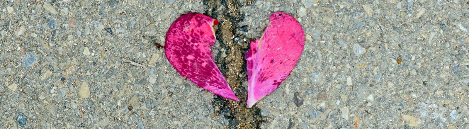 Zwei rosa Blutenblätter liegen auf dem Boden. Sie formen zwei Hälften eines Herzes, durch die Mitte läuft ein Riss im Boden.