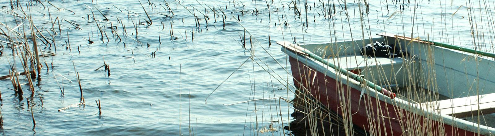 Boot am Ufer eines Sees