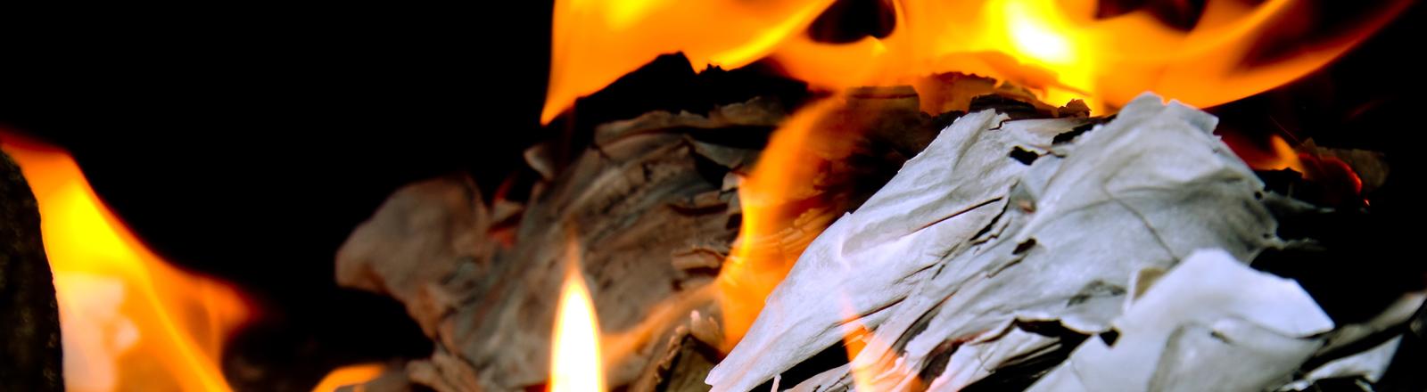 Papier verbrennt im Feuer