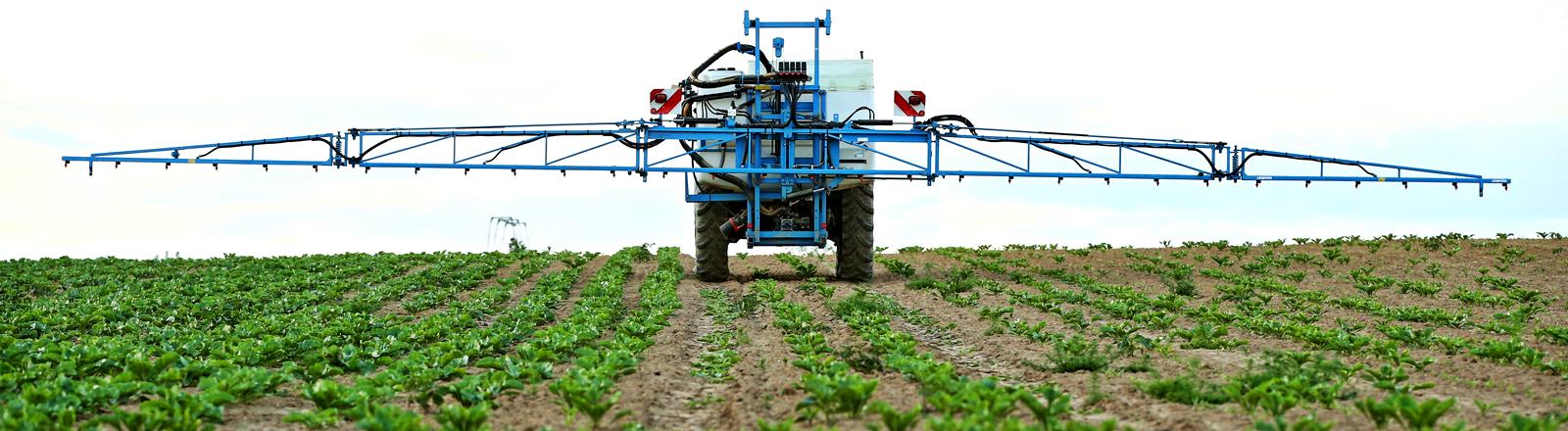 Ein Traktor spritzt Herbizide auf einem Acker.