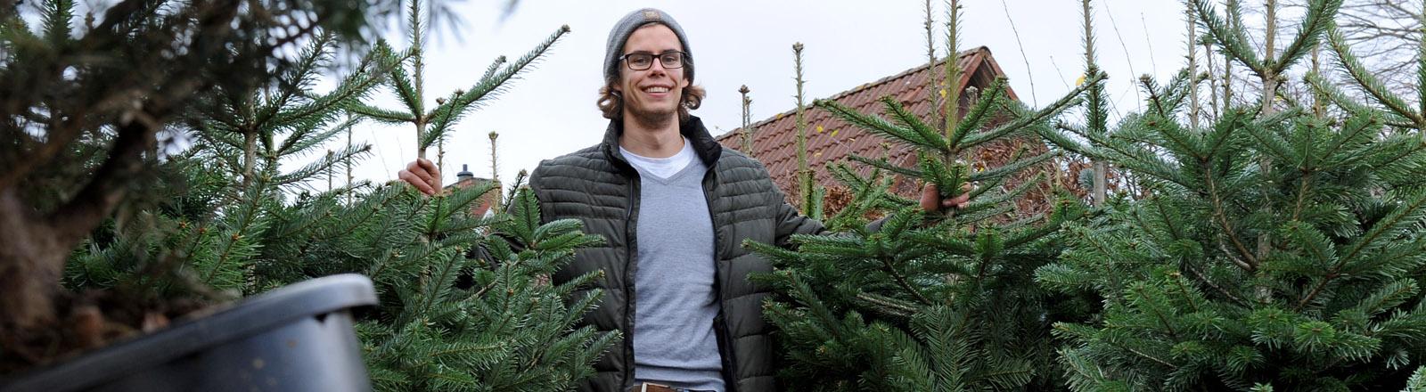 Kersten Scholz von der Baumschule Scholz im Ammerland bei Bad Zwischenahn (Niedersachsen) stellt am 04.12.2015 die neuen Leih-Weihnachtsbäume mit Blumentopf vor.