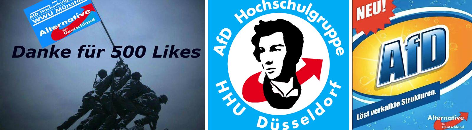 Eine Collage aus mehreren AfD Plakaten und Logos.