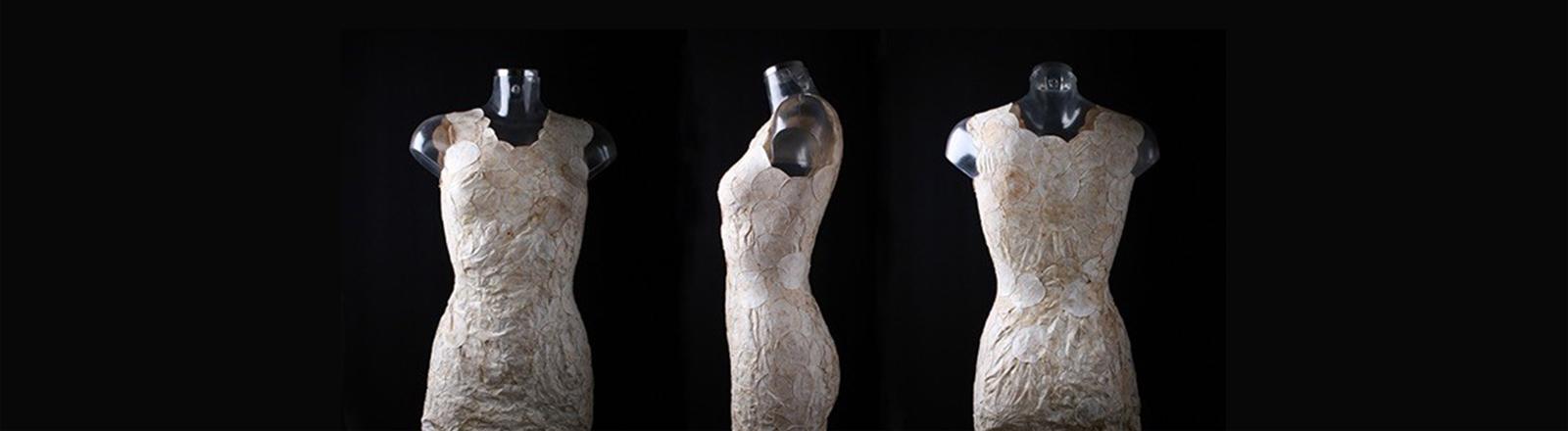 Ein Kleid aus Pilzen