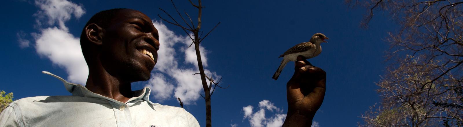 Der Yao-Honigjänger Orlando Yassene hält einen weiblichen Großen Honiganzeiger auf seinem Finger im Niassa Nationalpark in Mosamibik.