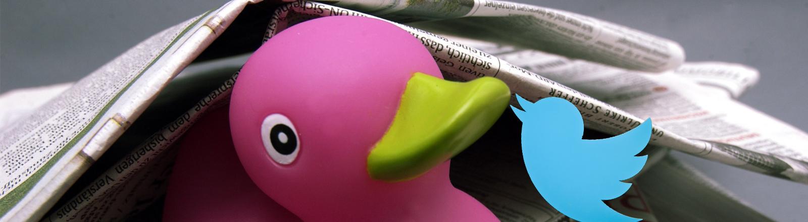 Eine Zeitungsente und Twitter-Vogel treffen sich