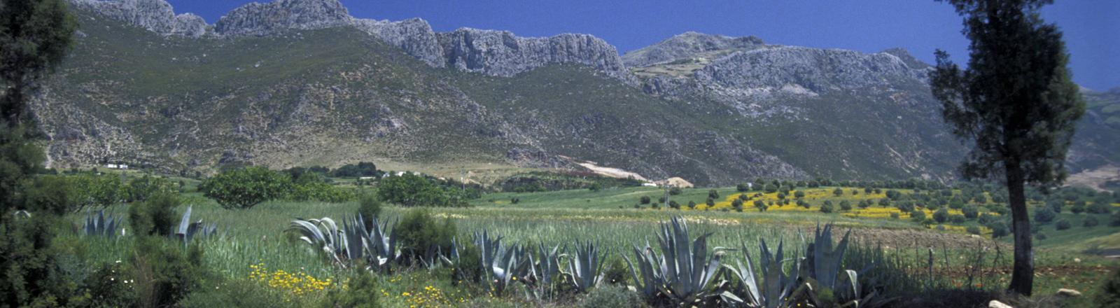 Rif-Gebirge in Marokko