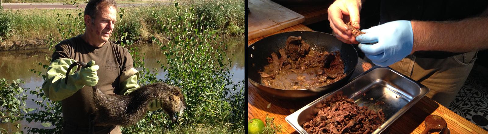 Die Küche der unerwünschten Tiere ist ein Kunstprojekt von zwei Holländern, das Tiere zu Mahlzeiten verarbeitet, die normalerweiser weggeschmissen werden. Krähen oder Bisamratten zum Beispiel.