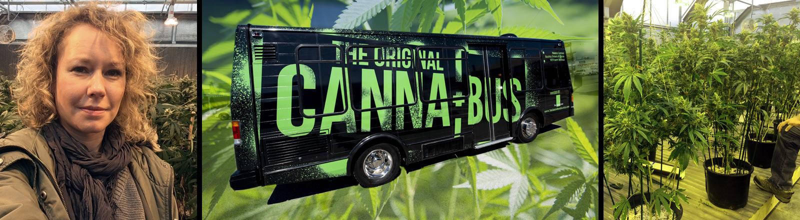 Hanna Ender in einem Gewächshaus für Hanfpflanzen, ein Party-Bus, in dem Marihuana geraucht werden darf.