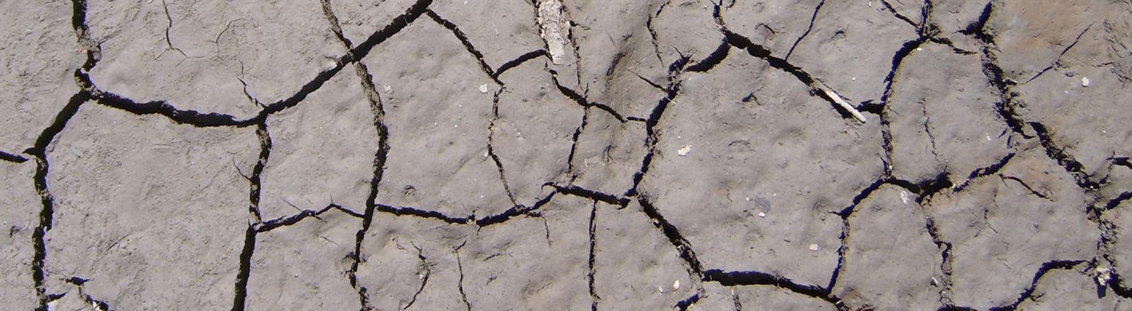 Dürre, Seeboden. Kein Wasser. Hier wächst nichts.