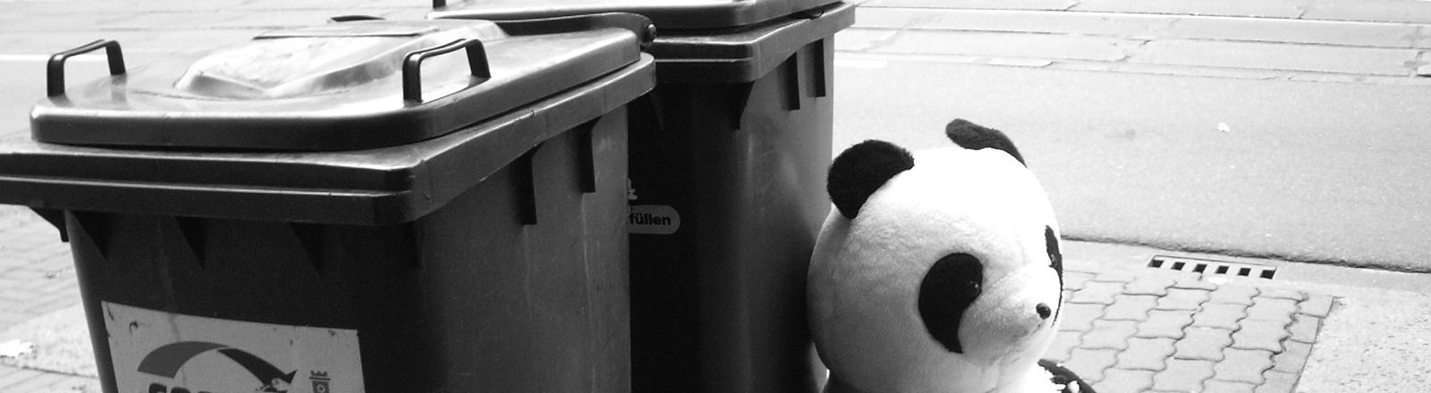 Panda Stofftier neben Mülltonnen.