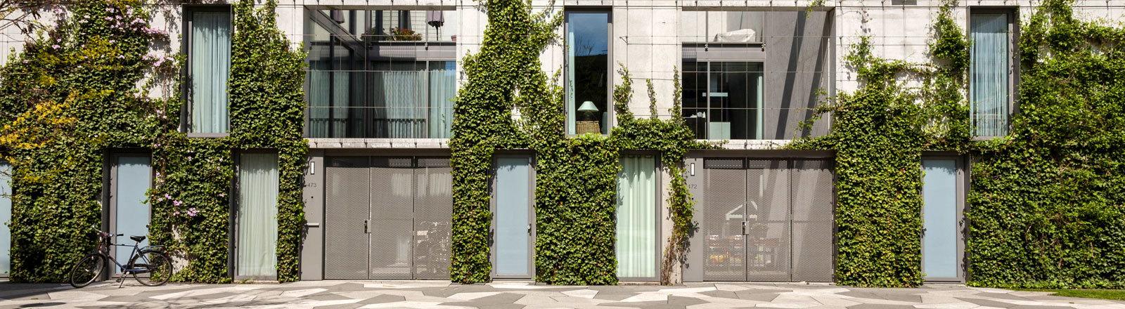 Moderne Architektur in den Niederlanden, begrünte Fassade