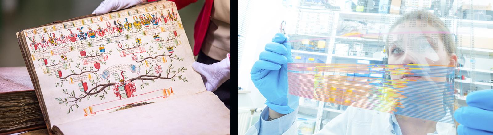 Ahnenforschung - ein gezeichneter Stammbaum in einem Buch und die Situation im Labor, wo eine Wissenschaftlerin genetische Daten ausliest.