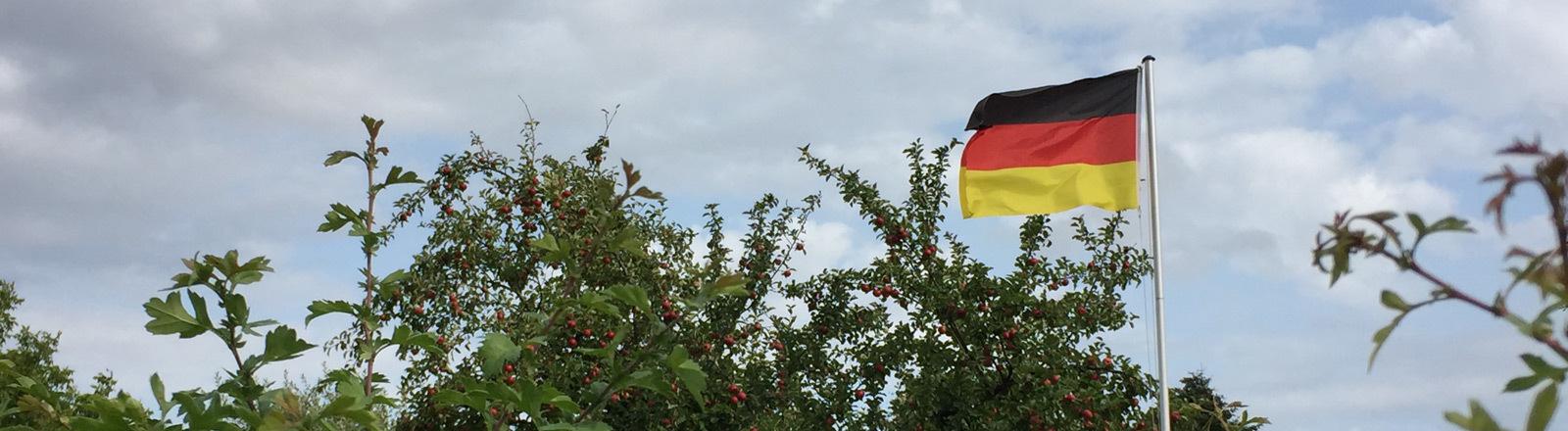 Deutsche Fahne in einem Kleingärtner-Verein in Kiel.