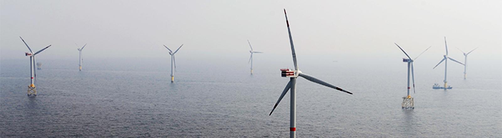 """Die Luftaufnahme vom 21.08.2013 zeigt den Versuchs-Offshore-Windpark """"Alpha Ventus"""" vor der ostfriesischen Insel Borkum (Niedersachsen) in der Nordsee. """"Alpha Ventus"""" produziert mehr Strom als erwartet und gilt als Vorzeigeobjekt der Windkraftindustrie."""